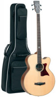 Acoustic Bass TANGLEWOOD TW155 A/BASS - Premier Series - B-Band Crescent - solid top