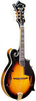 Mandolin GOLD TONE GM 70+ - F Style - pickup - all solid + hardcase