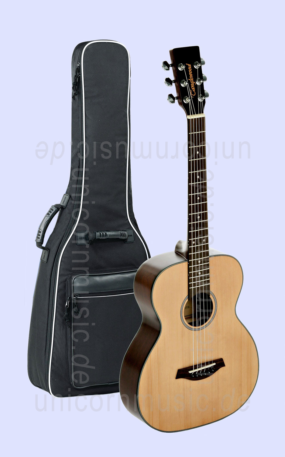 to article description / price Acoustic Guitar TANGLEWOOD TBF SAPLING - Indiana Series - Ideal for travelling - laminated top