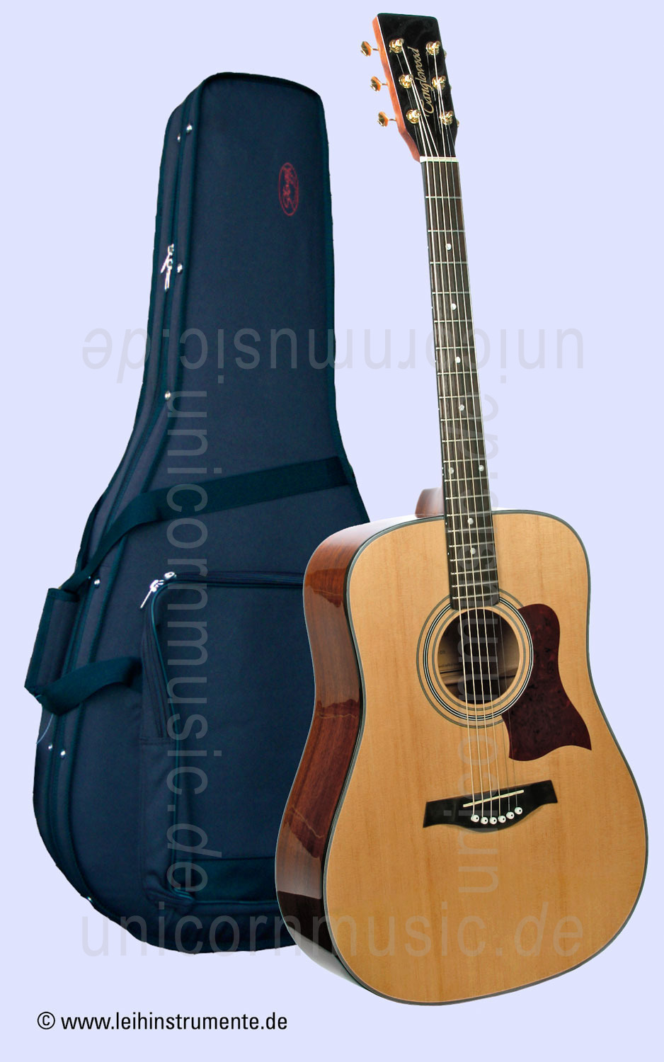 to article description / price Acoustic Guitar TANGLEWOOD TW12-DS - Sundance Series - Dreadnought - Solid spruce top